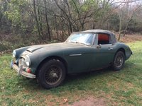 Picture of 1966 Austin-Healey 3000 BJ8, exterior