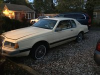 Picture of 1984 Ford Thunderbird Base, exterior