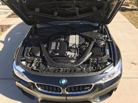 Picture of 2016 BMW M4 Coupe
