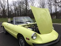 1977 Alfa Romeo Spider Picture Gallery