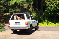 Picture of 1993 Toyota 4Runner 4 Dr SR5 V6 4WD SUV
