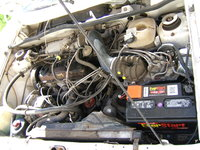 Picture of 1986 Volkswagen Cabriolet Base, engine