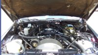 Picture of 1982 Cadillac DeVille Base Sedan, engine